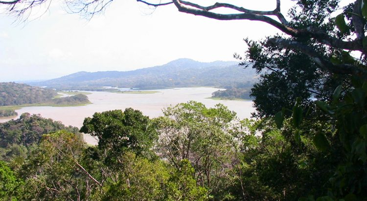 Photo of the Chagres River in the Gamboa rain forest in Panama | Photo by Randy Gener