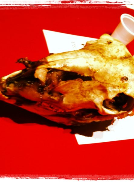 "Detail: Skull in Željko Zorica's ""KroaTisch-Amerikanische Freundschaft"" | Photo by Randy Gener"